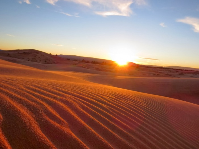 An Expanse of Photographic Bliss: Coral Pink Sand Dunes, Visit Southern Utah   Parks100