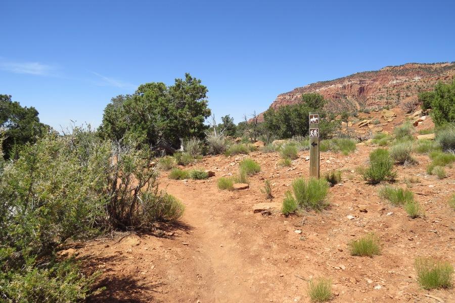 Cottonwood Wash Trail, Visit Southern Utah | Parks100