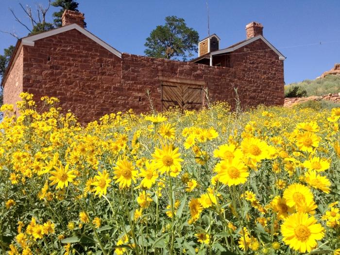 Pipe Spring National Monument, Kait Thomas, Arizona Adventure Bucket List | Parks100
