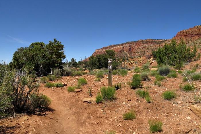 Cottonwood Canyon, Kanab, Utah Adventure Bucket List | Parks100