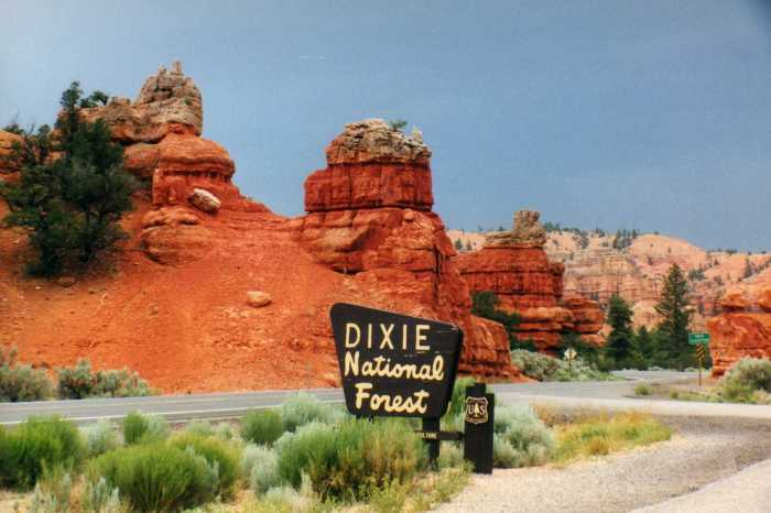 Red Canyon, Dixie National Forest, Utah Adventure Bucket List | Parks100